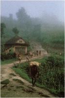 "Sauro Colombo ""Nepal"" - Sez. DIA Paesaggio Ex-aequo"
