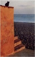"""Gibi Peluffo """"La sentinella"""" - Sez. Stampe Colore Miglior autore"""