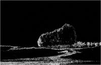 """Umberto Bonfini """"Paesaggio n° 10"""" - Sez. Tema Lbero BN 5° Premio"""
