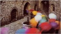 "Giuseppe Assirelli ""Soft moving"" - Sez. Stampe Colore Ex-aequo"
