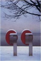 """Francesco Madella """"Sotto zero 2"""" - Sez. Stampe Colore Premio Ex-aequo"""