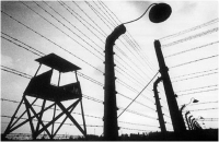 "Marco Marini ""Auschwitz Birkenau"" - Sez. Stampe BN Opera segnalata"