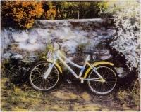 """Fabrizio Carlini """"Biciclette 2"""" - Sez. Stampe Colore 2° Premio"""