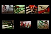 """Riccardo Di nasso """"Forks"""" - Sez. Portfolio 2° Premio"""