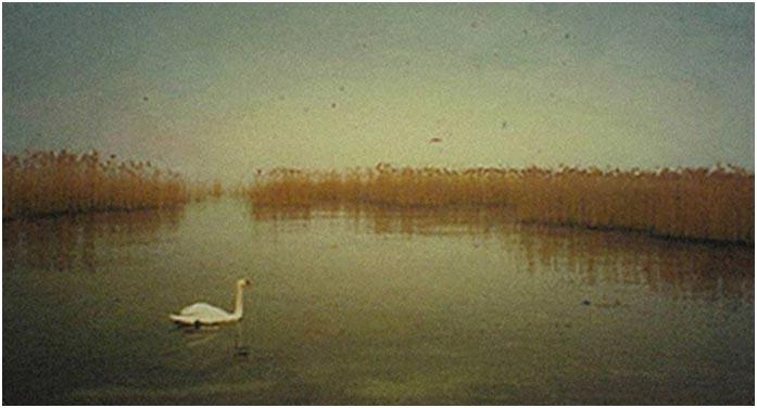 "Diego Speri ""Il mio lago 4"" - Sez. RRSP CLP 2° Premio"
