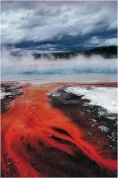 """Sara Doroni """"Natural red"""" - Sez. CLP Tema Natura 1° Premio"""