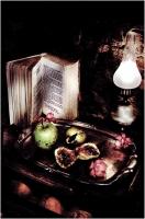 """Mario Spalla """"Still life in light painting 10"""" - Truciolo d'Oro 2007"""