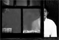 """Mario Rossetti """"Dietro la finestra"""" - Sez. I.P. Tema Libero 1° Premio"""