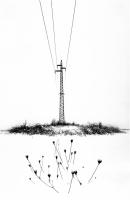 """Davide Morellini """"Natura e non ..."""" - Sez. Stampe BN 1° Premio"""