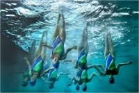 """Adriano Favero """"Nuoto sincronizzato: il lato nascosto 1"""" - Sez. IP Colore Premio ex-aequo"""