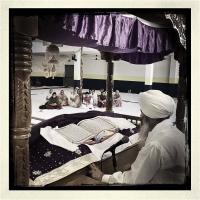 """Giovanni Brighente """"Comunità Sikh 7"""" - Truciolo d'Oro"""