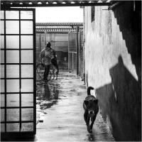 "Elena Bacchi ""Il rifugio 6"" - Sez. RRSP Premio ex-aequo"