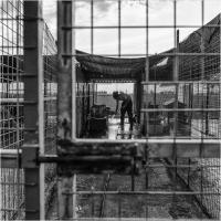 "Elena Bacchi ""Il rifugio 2"" - Sez. RRSP Premio ex-aequo"