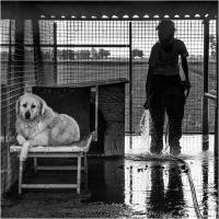 "Elena Bacchi ""Il rifugio 3"" - Sez. RRSP Premio ex-aequo"