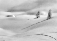 Albertini Paolo - The land of silence