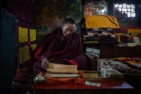 Salice Francesca - Tibetan prayer