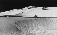 """Giovanni Gallina """"Dune"""" - Sez. Tema Libero BN Cat. Paesaggio 1° Premio Truciolo d'Argento"""