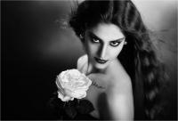 "TambèGiuseppe ""The white rose"""
