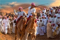 "Montini Giulio ""Camel race 4"""