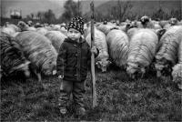 """Bardossi Virgilio """"Little shepherd"""""""