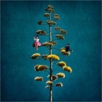 """Signorini Anna """"Come alberi 4 (2019)"""""""