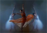 "Gibertoni Dino Odoardo ""Balletto (2018)"""