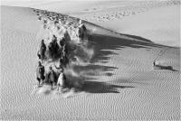 """Agnesoni Mauro """"Run into the desert"""" (2018)"""