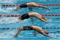"Favero Adriano ""Starting backstroke"" (2020)"