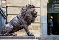 """Del Ghianda Fabio """"The lion and the proud man """" (2020)"""