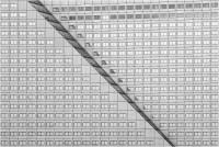 D'Alia Valentina - 352 windows (2020)
