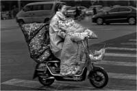 Bardossi Virgilio - Autunno a Beijing (2021)