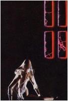 """Carlo Muzzani """"Cauchemar"""" - Sez. Diapositive a Colori Cat. Soggetti Vari 2° Premio"""