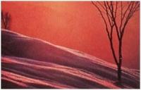 """Piero Corti """"Prima neve"""" - Sez. Diapositive a Colori Cat. Paesaggio 2° Premio"""