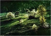 """Gianni Giatti """"Primavera"""" - Sez. Diapositive a Colori Cat. Paesaggio 3° Premio"""